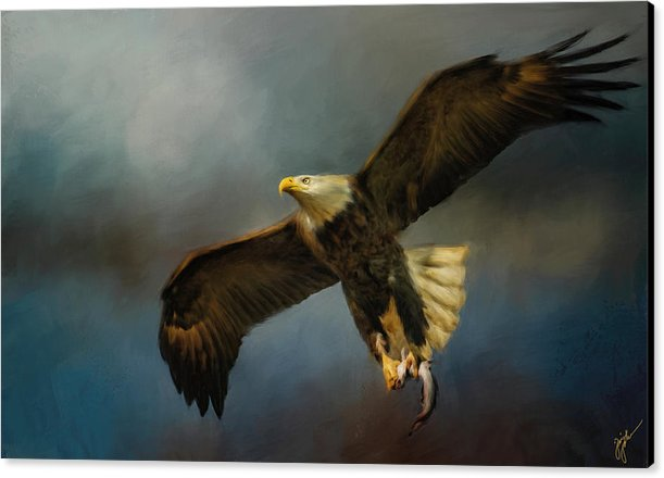 Fish For Lunch - Bald Eagle Painting