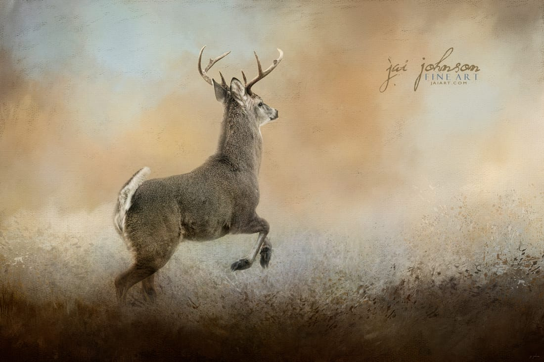 Run From Negativity Deer Art by Jai Johnson